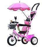 QWM-Las bicicletas infantiles para bebés Niños Carros de triciclo Carritos de bebé Niño Bicicletas 3 ruedas, PinkBike (Niño / Niña, 1-3-5 años de edad) Regalo para niños ( Color : Titanium wheel )