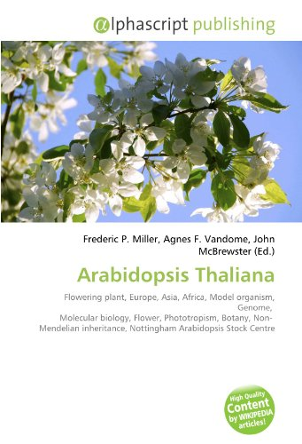 Arabidopsis Thaliana: Flowering plant, Europe, Asia, Africa, Model organism, Genome, Molecular biology, Flower, Phototropism, Botany, Non- Mendelian inheritance, Nottingham Arabidopsis Stock Centre