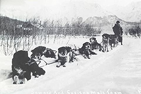 POSTER Seward Susitna Alaska mail team 1913 Object number A 2009 35 Medium postcard stock photo emulsion An mail contractor dog sled team this ic postcard are pictured at rest while moving a load mail between Seward Kenai Peninsula Susitna Alaska a few miles northwest Anchorage Dog sleds transported mail some areas northern United States Alaskan Territory during winter months Contract carriers used these sled