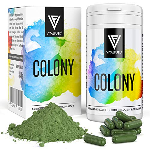 Vitalfuel - Colon - 60 Stück - für mehr Wohlbefinden - mit vielen Kräutern & Gewürzen - vegan -