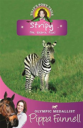 Stripy the zebra foal