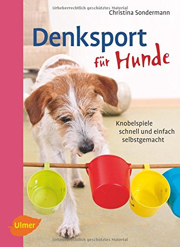 Denksport für Hunde: Knobelspiele schnell und einfach selbstgemacht