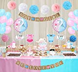LUCK COLLECTION Baby Shower Party Dekorationen Jungen oder Mädchen Geschlecht offenbaren Party Supplies 84 Pack