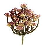 Décoration Végétal Plastique Fleur de Cactus Feuillage Succulent Artificiel