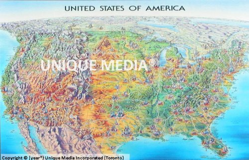 Unique Media Inc+ Usa laminierte Karte (Karten Laminierte)