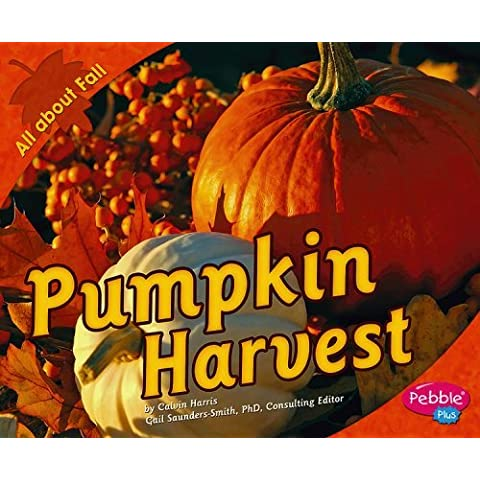 Pumpkin Harvest (All about Fall) by Calvin Harris (2007-09-01)