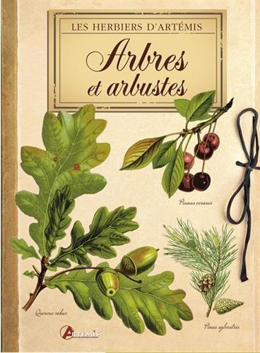arbres-et-arbustes