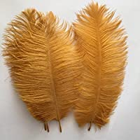 paaiter 10–12pulgadas (25–30cm Avestruz Pluma Decoración para el hogar DIY Craft–Pack de 10(oro)