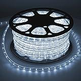 ECD Germany LED Lichterschlauch Kaltweiß 6000K, 50 Meter/36 LED Lampen pro Meter/Energieklasse A+