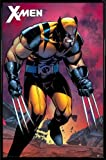 1art1® X-Men Poster et Cadre (Plastique) - Wolverine Berserker Rage (91 x 61cm)
