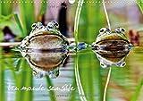 Un monde sensible : En macro ou au télézoom, divers animaux autour de nous. Calendrier mural A3 horizontal