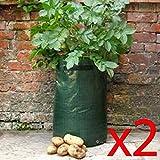 Potato Planter - Grow Your Own Potato (2)