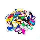 Elebor 100 Packs Porte-clés en plastique multi-couleurs FOB ID étiquettes étiquettes d'identification de bagage avec anneau porte-clés porte-clés, 10 couleurs aléatoires...