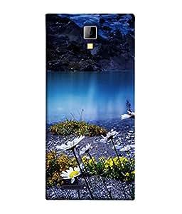 PrintVisa Designer Back Case Cover for Micromax Canvas Xpress A99 :: Micromax A99 Canvas Xpress (Beautiful Evening Picture Poster Blue Water Sun Flower )