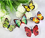 Clearance Sale Brydon Colorful Changing Butterfly LED Night Light Lamp Home Room Party Desk Wall Decor