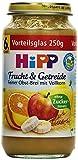 HiPP Feiner-Obst-Brei Bio, 6er Pack (6 x 250 g)