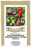 Samen Mix - Nasch Paprika süß - Snack Paprika - gelb, orange, rot, braun - 4 Sorten - 20 Samen