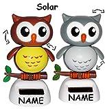2 Stück: Wackeltier - Solar -