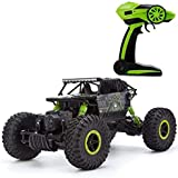 RADHE Waterproof Remote Controlled Rock Crawler RC Monster Truck, Four Wheel Drive
