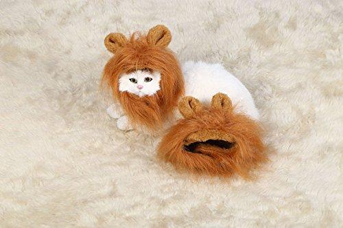 Peluca de león genérico para perro y gato con orejas mascotas ajustable cómodo león pelo perro vestido para Halloween Navidad Pascua Festival Fiesta Actividad