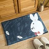 DAN&DLAM Fußmatte, vorne Willkommen Eingang Lustige Fußmatte für Indoor Outdoor Eintrag Garage Patio Schuh Teppiche - 40 * 60cm