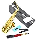 Alt Saxophon in Gold mit ABS-Koffer