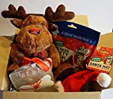 Paradise Pets CHRISTMAS DOG GIFT BOX WITH PLUSH REINDEER 300G DELI VARIETY PACK XMAS HAT & CARD
