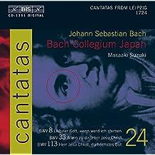 Cantatas Vol.24