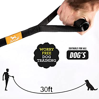 Dog Training Lead - 30 Foot Long for Pups and Dogs - Padded Foam Barrel Handle - Free Carry Bag - Made from Strong Nylon… 3