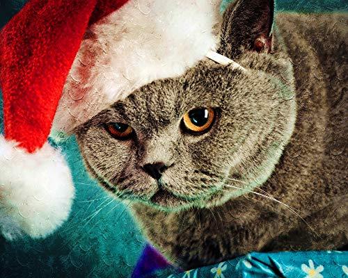 SINABC Diamond Painting Set Groß Santa Kitty Tier Runder Bohrer Handwerk Hobbies Zu Den Zubehörwerkzeugen Gehören Eine Selbstklebende Leinwandablage Und EIN Punktbohrstift Frameless 40X50Cm -