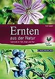 Ernten aus der Natur: Sammeln in Feld, Wald und Flur (LandLeben) - Axel Gutjahr