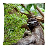 Akhy Sloth iPhone Fashion Beautiful Pillow Case Pillow Cover 18 x 18 Inch