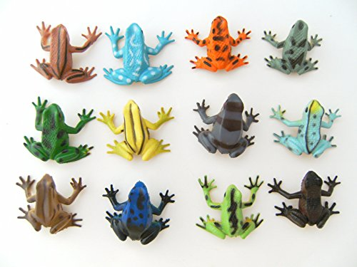 Frösche 12erSet 4,5cm Hartgummi Kröte Pfeilgiftfrösche Spielzeug Frosch -