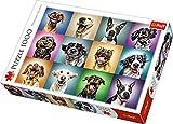 Trefl 10462 Puzzle Puzzle - Rompecabezas (Puzzle Rompecabezas, Animales, Niños y Adultos, Perro, Niño/niña, 12 año(s))