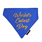#8: HUFT World's Cutest Dog Bandana (Large)