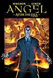 Angel: After the Fall, Vol. 2: First Night by Joss Whedon (2009-11-26)