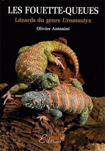 Les Fouette-queues: Lézards du genre Uromastyx