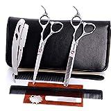 Forbici professionali per parrucchieri Strumenti per parrucchieri Forbici piatte Frese Set di forbici 1KLR-H641