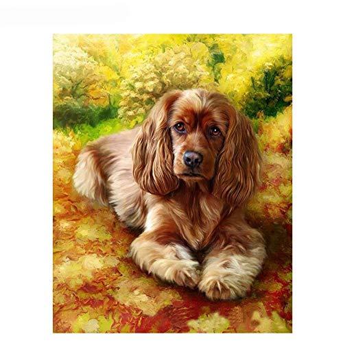 Dnesdanas Dipinto Fai da Te con i Numeri Dipinto ad Olio su Tela per Adulti Principiante Home Decor Cucciolo Golden Retriever 40x50cm