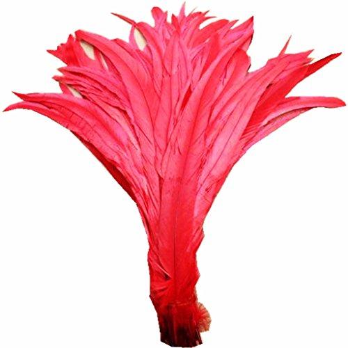 Preisvergleich Produktbild ERGEOB Natur Dekoration Hahn Schweif Feder schwarz weiß braun 30-35cm/ 12-14 Zoll länge, Ideal für Kostüme, Hüte, basteln, Zuhause Dekor, DIY rot 20 stück