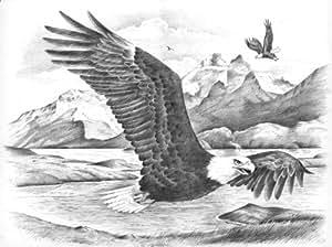 Reeves - 11021 - Esquisse Par Numéros - Grand Modèle - Aigle