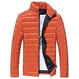 MOIKA Herren Steppjacke Übergangsjacke Jacke mit Stehkragen Männer Jungen Casual Warm Stehkragen Schlank Winter Zip Coat Outwear Jacke