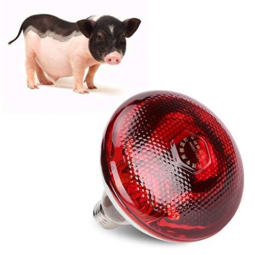 DERCLIVE E27 Wärmelampe Geflügellampe Infrarotlampe Verbessert Die Überlebensrate von Geflügel