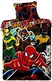 Jerry Fabrics 76332 Ropa de Cama, Algodón, Multicolour, 200x140x3 cm