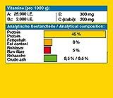 JBL Grana 40647 Premium Alleinfutter für kleine Aquarienfische, Granulat 250 ml