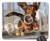 POGJY Gaming Mauspad 7 x 8 Inches, Mousepad, Verbessert Präzision und Geschwindigkeit, Gummiunterseite für Stabilen Halt auf Glatten Oberflächen, Rutschfest, Strapazierfähig Schwarz - Bär 5 image 408