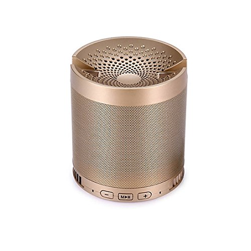 Lautsprecher Bluetooth EVOSE mit fm radio und usb port, lautsprecher wireless mit Smartphones und Tablets halterung, bluetooth lautsprecher mit HiFi-Sound und Bass-Effekt