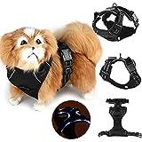 LasVogos Schwarz Heavy Duty Weich gepolsterte Komfort-Steuer Einstellbare LED-Hundehalsband Kabelstrang-Haustier-Brustgurt USB aufladbare
