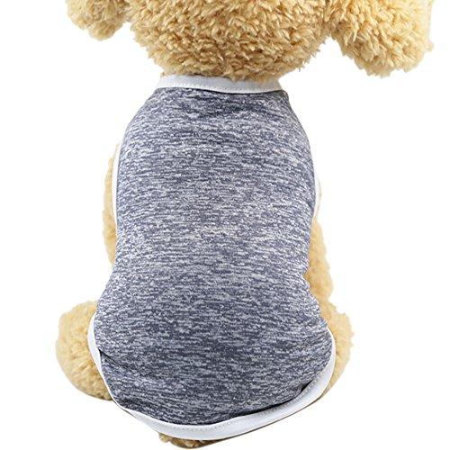 Bayliney Kalt Winter Hund Haustier Mantel Jacke Weste Warm Outfit Kleider Zum Klein Mittel Groß...