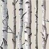 Brewster FD31051 Fine Decor Carta da parati, motivo foresta con betulle, Beige/Panna